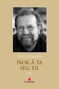 Nok å ta seg til (ebok) av Stig Holmås