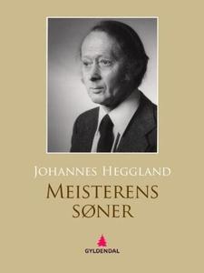 Meisterens søner (ebok) av Johannes Heggland