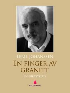 En finger av granitt (ebok) av Terje Johansse