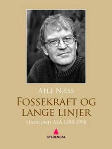 Fossekraft og lange linjer (ebok) av Atle Næs