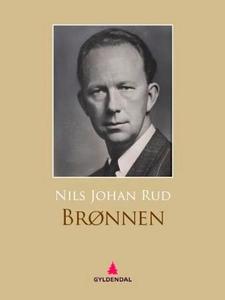 Brønnen (ebok) av Nils Johan Rud