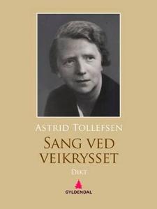 Sang ved veikrysset (ebok) av Astrid Tollefse