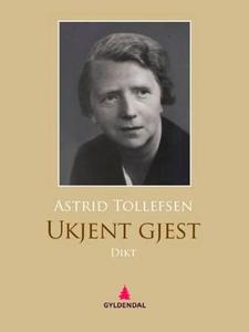Ukjent gjest (ebok) av Astrid Tollefsen