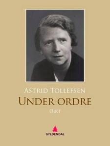 Under ordre (ebok) av Astrid Tollefsen