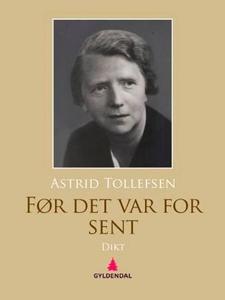 Før det var for sent (ebok) av Astrid Tollefs