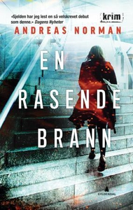 En rasende brann (ebok) av Anders Norman, And