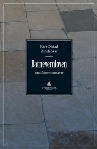 Barnevernloven (ebok) av Kari Ofstad, Randi S