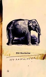 Oppdateringer (ebok) av Pål Norheim