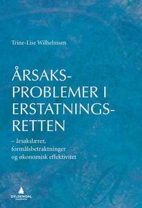 Årsaksproblemer i erstatningsretten (ebok) av