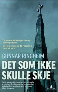 Det som ikke skulle skje (ebok) av Gunnar Rin