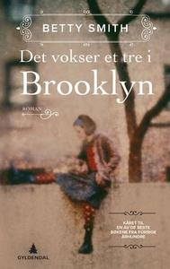 Det vokser et tre i Brooklyn (ebok) av Betty