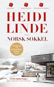 Norsk sokkel (ebok) av Heidi Linde