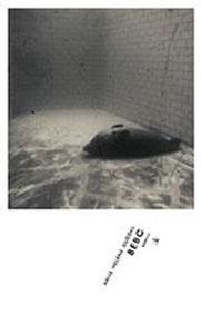 Bebo (ebok) av Anne Helene Guddal