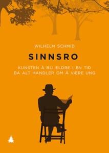 Sinnsro (ebok) av Wilhelm Schmid