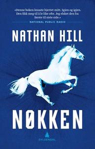 Nøkken (ebok) av Nathan Hill