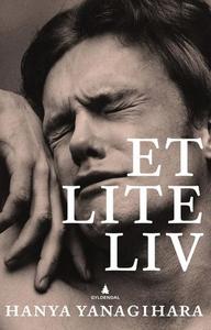 Et lite liv (ebok) av Hanya Yanagihara