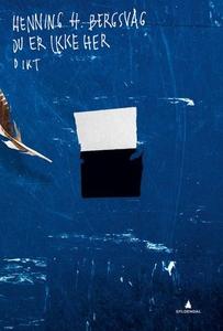 Du er ikke her (ebok) av Henning H. Bergsvåg