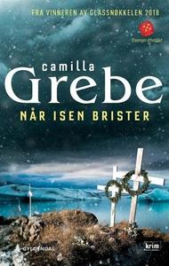 Når isen brister (ebok) av Camilla Grebe