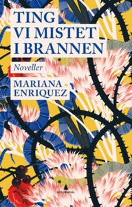 Ting vi mistet i brannen (ebok) av Mariana En