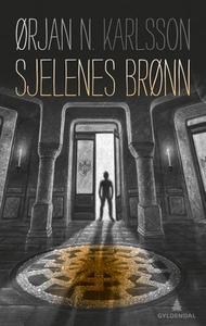 Sjelenes brønn (ebok) av Ørjan N. Karlsson