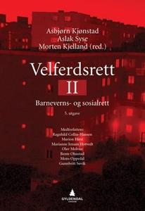 Velferdsrett II (ebok) av