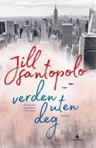 Verden uten deg (ebok) av Jill Santopolo