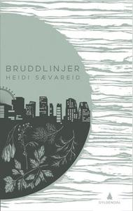 Bruddlinjer (ebok) av Heidi Sævareid
