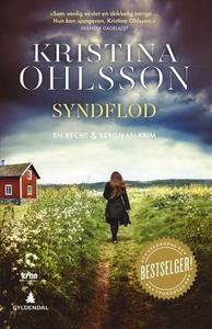 Syndflod (ebok) av Kristina Ohlsson