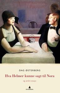 Hva Helmer kunne sagt til Nora (ebok) av Dag