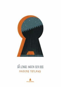 Så lenge ingen ser oss (ebok) av Anders Totla