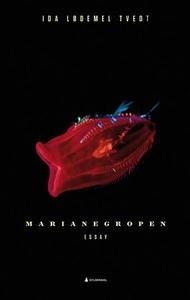 Marianegropen (ebok) av Ida Lødemel Tvedt