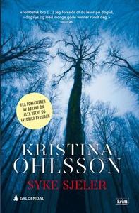 Syke sjeler (ebok) av Kristina Ohlsson
