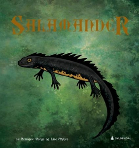 Salamander (ebok) av Synnøve Borge