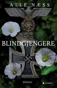 Blindgjengere (ebok) av Atle Næss