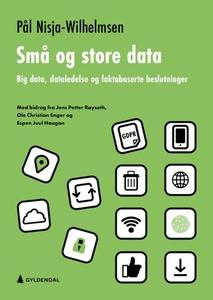Små og store data (ebok) av Pål Nisja-Wilhelm