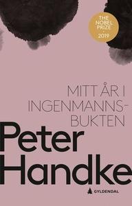 Mitt år i Ingenmannsbukten (ebok) av Peter Ha