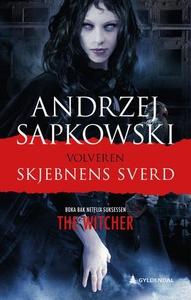 Skjebnens sverd (ebok) av Andrzej Sapkowski