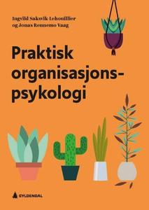 Praktisk organisasjonspsykologi (ebok) av Ing