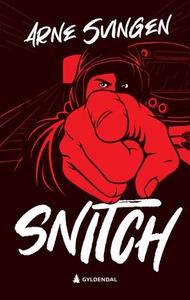 Snitch (ebok) av Arne Svingen