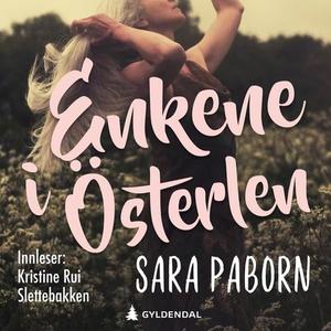 Enkene i Österlen (lydbok) av Sara Paborn