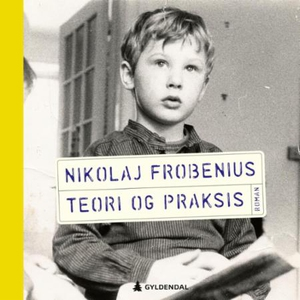 Teori og praksis (lydbok) av Nikolaj Frobeniu