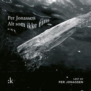 Alt som ikke fins (lydbok) av Per Jonassen