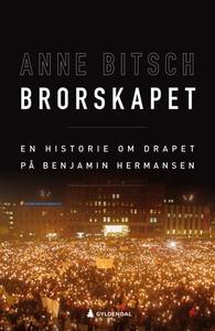 Brorskapet (ebok) av Anne Bitsch
