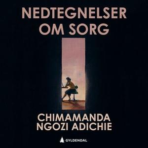 Nedtegnelser om sorg (lydbok) av Chimamanda N