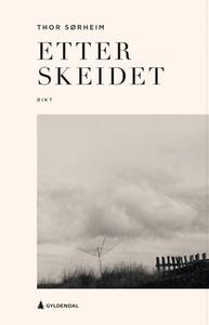 Etter skeidet (ebok) av Thor Sørheim