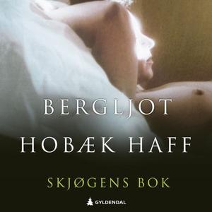 Skjøgens bok (lydbok) av Bergljot Hobæk Haff