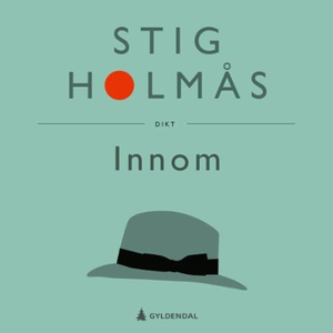 Innom (lydbok) av Stig Holmås