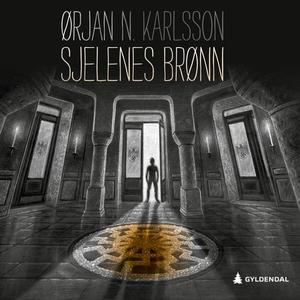 Sjelenes brønn (lydbok) av Ørjan N. Karlsson