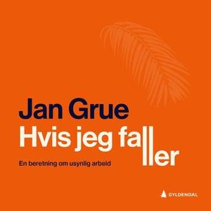 Hvis jeg faller (lydbok) av Jan Grue