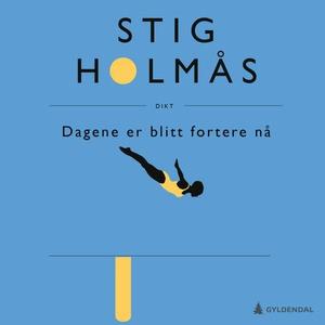 Dagene er blitt fortere nå (lydbok) av Stig H